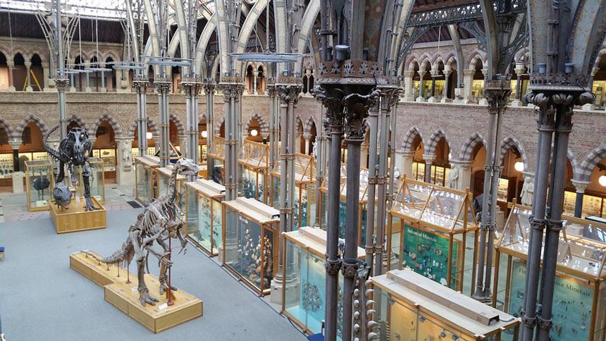Oxford - Museu de Historia Natural - Estrela Tour